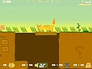 Orange cat adventure online